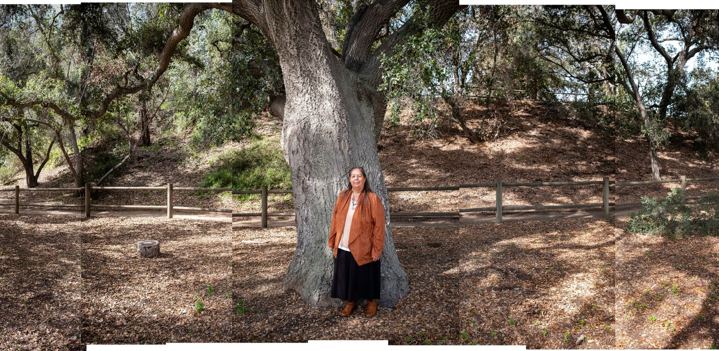 Julia Bogany is a teacher, cultural ambassador, artist, speaker, mother, grandmother, great-grandmother, and member of the Indigenous Tongva tribe. Here she poses for a portrait in front of a giant Oak tree at the replica of a Tongva village at the Santa Ana Botanic Gardens in Claremont.